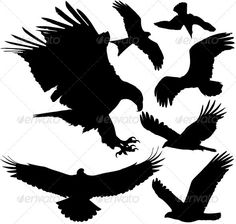 Birds of Prey Vector Silhouettes  #GraphicRiver         Vector silhouettes of eale, hawk, kite etc. EPS and AI saved in Illustrator 10, layered and fully editable. 4750×5000 JPG is included.     Created: 2February13 GraphicsFilesIncluded: JPGImage