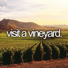 Visited vineyards in the Swan River Valley and Margaret River in WA, in the Tamar Valley in Tasmania and in Provence in France.