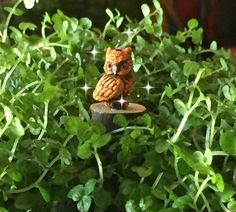 Fairy Garden Micro Mini Owl