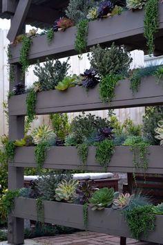 brise-vue terrasse étagères en bois avec plantes pour plus d'intimité