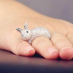 Bunny Ring!