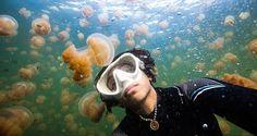 Nadar en el Lago de las Medusas: