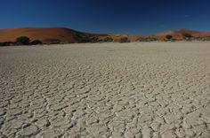 "Mystery Behind  ""Fairy Circles"" Of The Namib Desert"