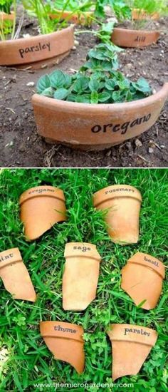 Interesting DIY Garden Markers That Are Easy To Make