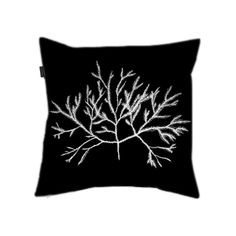 """Cushion cover """"Seaweed Fronds on Black"""" (back) by Cally Creates. €19.99 free shipping worldwide. Reversed pen and Ink drawing of seaweed from old 1990's sketchbooks - now revived for print. The drawing is in very pale grey rather than white, so as to retain the detail of the original illustration."""