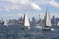 Sailing in Sydney Harbour Visit us on http://www.campbelltowndentalcare.com.au