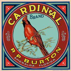 Emeralda Florida Cardinal Brand Bird Orange Citrus Fruit Crate Label Art Print   eBay
