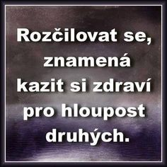 To je pravda. Story Quotes, Wise Quotes, Motivational Quotes, Mindfulness Meditation, Just Smile, Motto, Slogan, Quotations, Wisdom
