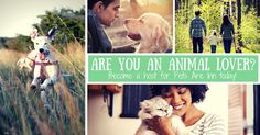 Pets Are Inn Minneapolis South: Why Should I Be A Pet Sitter?