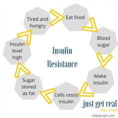 the insulin resistance diet for pcos pdf