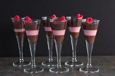 Daydreamer Desserts - Dark Chocolate and Raspberry Panna Cotta