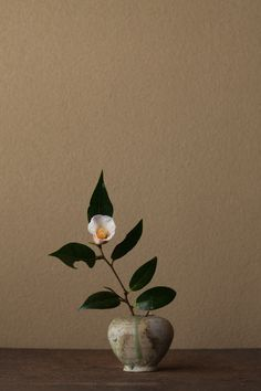"Camellia flower = ""in the snow Hana"" (camellia / Setchuuka) vessel = Sanage small pot (Heian period)"