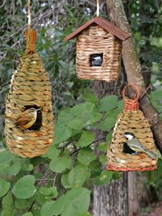 Rustic Birdhouses Roosting Pockets Wren Bird House is part of Birdhouses rustic - Tightly woven reed grass birdhouses with cedar roofs have a rough texture that birds prefer Sized for small songbirds, including wrens and finches Bird House Feeder, Diy Bird Feeder, Humming Bird Feeders, Unique Bird Feeders, Rustic Bird Feeders, Contemporary Bird Feeders, Ground Bird Feeder, Carpenter Bee Trap, Jardin Decor