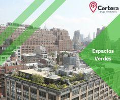 😮🌳🏢  ¿Te gustaría ver una ciudad cada vez más verde?  Imagina Guadalajara con techos verdes!!  Respirando y viviendo mejor... #Certera