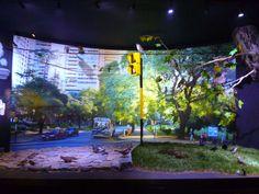 diorama museo de ciencias naturales, buenos aires