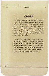 Old Design Shop ~ free digital image: vintage chives seed packet (back)