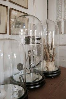 cloche, my favourite items to display, well, my favourite items xxx