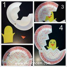 Yumurtadan Çıkan Civciv