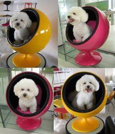 Ball chair para pets!