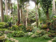 Photo of Hunte's Gardens
