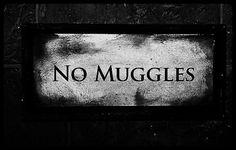 14 Ideas para convertir tu habitación en Hogwarts