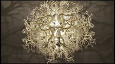 """Forms in Nature. Lamp design by: Hilden-Diaz """"Forms in Nature"""" https://piodiaz.wordpress.com/2012/11/15/forms-in-nature/"""