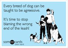 Every breed of dog can be taught to be agreessive. It's time to stop blaming the wrong end of the leash.