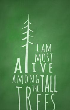 """""""I am most alive among the tall trees."""" Amen."""