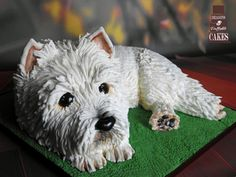 Dougal the Westie by Dragons and Daffodils Cakes