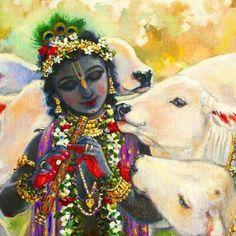 Señor Krishna, Krishna Lila, Krishna Bhajan, Baby Krishna, Radha Krishna Photo, Tanjore Painting, Krishna Painting, Lord Krishna Images, Krishna Pictures