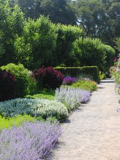 Filoli Estate....Tha place to go to get inspired. - ✳   #Home  #Landscape #Design via Christina Khandan, Irvine California ༺ ℭƘ ༻   IrvineHomeBlog