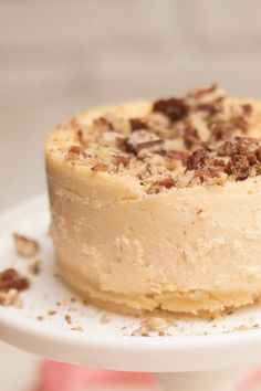This buttery rich keto pecan cheesecake is an attractive crowd-pleaser. Luscious pecan crust with a creamy and smooth cheesecake layer, perfect for festive occasions or whenever you need a new favorite dessert! Dessert Bars, Dessert Mousse, Dessert Drinks, Low Carb Cheesecake, Cheesecake Recipes, Dessert Recipes, Butter Pecan Cheesecake Recipe, Butter Pecan Cake, Dessert Healthy