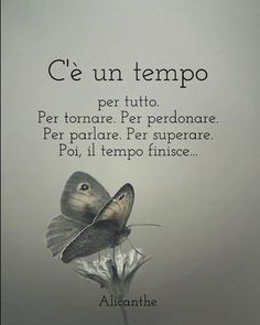 Poetry Quotes, Words Quotes, Love Quotes, Sayings, Journal Questions, Quotes Thoughts, Italian Quotes, Quotes About Everything, Motivational Phrases