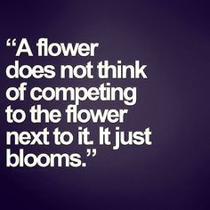"""A flower does not think of competing to the flower next to it, it just blooms. "" / life / quote / beauty"