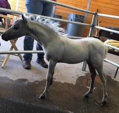 Premier Miniature Mares offered by MiniHorseSales.com