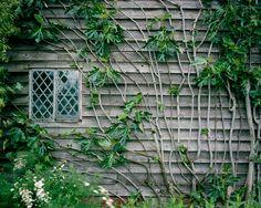 Great Dixter | The Garden Edit