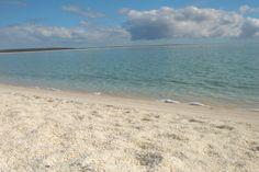 Shell beach Australia