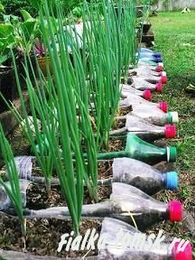 6 Clever Cool Tips: Vegetable Garden Design Mother Earth when to plant vegetable garden greenhouses. Eco Friendly & Fun 23 Of The Most Genius Recycling Plastic Bottle Projects (Plastic Bottle Garden) Upcycling recycling plastic bottles DIY Kids craft How Reuse Plastic Bottles, Recycled Bottles, Empty Bottles, Pop Bottles, Plastic Bottle Planter, Bottle Vase, Plastic Plastic, Bottle Trees, Plastic Waste
