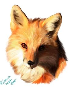 fox face drawing - Google Search