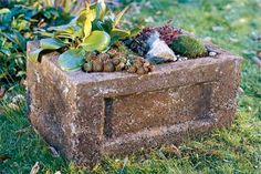 How to make a garden trough with all the character (but none of the hassle or expense) of carved stone. | Photo: Jennifer Levy | thisoldhouse.com
