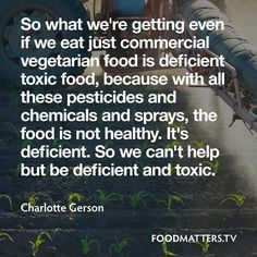 So our issue is that we are not focusing on the original cause of disease... deficiency and toxicity. We need to detoxify and replenish our bodies and the Earth!  www.foodmatters.tv