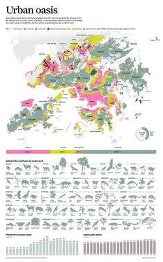 Urban oasis, infographic by Adolfo Arranz | South China Morning Post