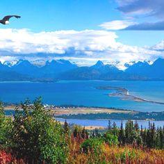 Beautiful Homer Alaska. My heart flies here.