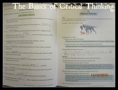Homeschooling for His Glory: The Basics of Critical Thinking - TOS Review