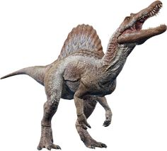 Prehistoric World, Prehistoric Animals, Tyrannosaurus Rex, Indominus Rex, Animal Action, Dinosaur Art, Dinosaur Photo, Jurassic Park World, All Dinosaurs