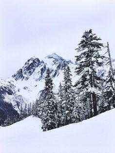 Mt. Baker, Washington