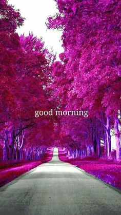 Good Morning Coffee Images, Good Morning Beautiful Pictures, Good Morning Images Flowers, Good Morning Inspiration, Good Morning Photos, Morning Pictures, Beautiful Morning, Good Morning Sister, Good Morning Texts