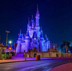 Disney will never be completed. It will continue to grow as long as there is imagination left in the world.