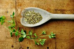 Oregano oil for treating candida
