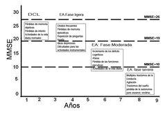fases alzheimer